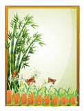 A frame with bamboo plants and butterflies Royalty Free Stock Images