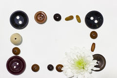 Frame of beads, buttons and white chrysanthemum Royalty Free Stock Images