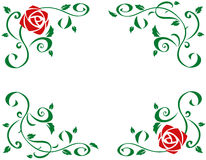 Frame with beautiful red rose flowers Stock Image
