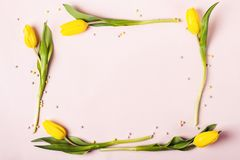 Frame of beautiful yellow tulips. Holiday mock up stock photography