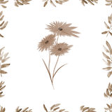 Frame with beige foliage and wild flowers a white background. Watercolor seamless pattern royalty free stock photo