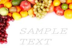 Frame of big group fruit. Stock Images