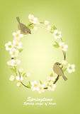 Frame with birds on flowering branches Royalty Free Stock Images