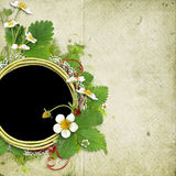 Frame with blooming bush of strawberries Royalty Free Stock Photography