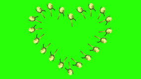 Frame of blooming roses time-lapse heart with green screen. Full HD stock footage