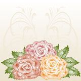 Frame with blossoming roses. Royalty Free Stock Photo