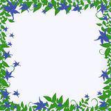 Frame with blue flowers Stock Photo