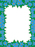 Frame with blue flowers Royalty Free Stock Photos