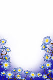 Frame blue flowers Royalty Free Stock Images