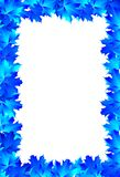 Frame blue maple leaves Stock Photography