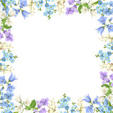 Frame with blue, purple and white flowers. Vector illustration. Royalty Free Stock Photos