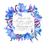 Frame with blue watercolor lilies. Stock Photography