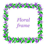 Frame with bluebells. Royalty Free Stock Photo