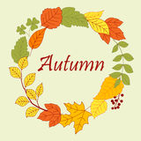 Frame border of autumn leaves and clovers Royalty Free Stock Photo