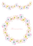 Frame border, garland and wreath of the tender pink blooming flowers, painted in a watercolor on a white background, greeting card Stock Image
