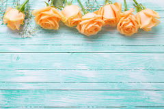 Frame or border from peach color roses flowers on turquoise wo. Oden background. Shabby chic. Place for text. Selective focus royalty free stock image