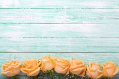 Frame or border from peach color roses flowers on turquoise wo. Oden background. Shabby chic. Place for text. Selective focus royalty free stock photo