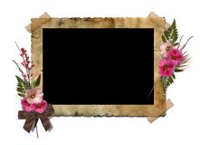 The frame with a bouquet of flowers hollyhocks. Stock Images