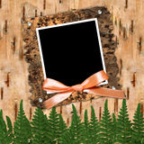 Frame with bow. To birchen bark Royalty Free Stock Image