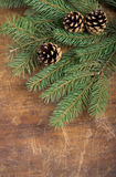 Frame from branch of Christmas tree on old wood Royalty Free Stock Image