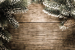Frame from branch of fir tree Royalty Free Stock Images