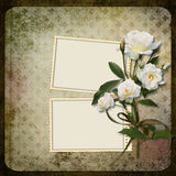 Frame with a branch of roses on a vintage background Stock Images