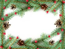 Frame from branches Royalty Free Stock Photography
