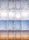 Frame of the branches against the sky vector illustration