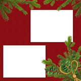 Frame with branches on the claret background. White frame with spruce branches on the claret background Stock Photography