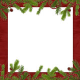 Frame with branches on the claret background. White frame with spruce branches on the claret background Stock Photo