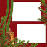 Frame with branches on the claret background Royalty Free Stock Photo