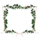 Frame of the branches of ivy Royalty Free Stock Image