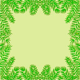 Frame of the branches of spruce Christmas theme vector Stock Photo