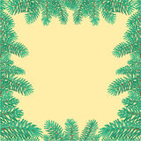 Frame of the branches of spruce Christmas tree vector Stock Images