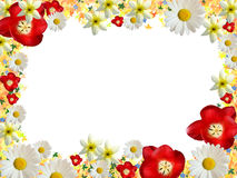 frame of bright flowers Stock Photo