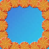 Frame from brown flowers on blue background Royalty Free Stock Photography