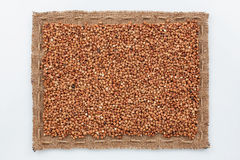 Frame of burlap and  buckwheat  grain Royalty Free Stock Photos