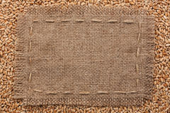 Frame of burlap  lying on a wheat  background Royalty Free Stock Images