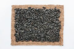 Frame of burlap and  sunflower seeds Stock Photo