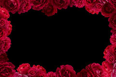Frame with bush of red rose flowers background isolated Royalty Free Stock Photography