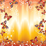 Frame with butterflies. Stock Images