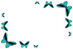 Frame from butterfly Royalty Free Stock Images