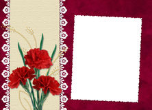 Frame with carnation on the red background. White frame with carnation and leaves on the red background Stock Images