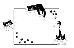 Frame with cheerful kittens. Frame decorated with cheerful playful black-and-white kittens and cats steps on isolated white background Stock Images