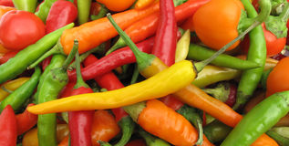 Frame cheio da paprika das pimentas de pimentão Fotografia de Stock Royalty Free