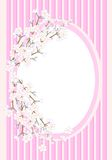 Frame with cherry blossom, cdr vector Stock Photography