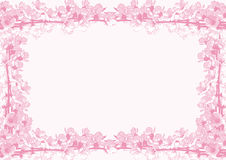 Frame of cherry blossoms. Collage of cherry blossoms. Horizontal, pink, monochrome royalty free illustration