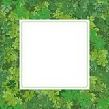 Frame with chestnut leaves Royalty Free Stock Photo