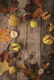 Frame of chestnuts  and leaves on the wooden background vertical with film filter effect Royalty Free Stock Images