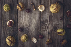 Frame of chestnuts on the wooden background horizontal with film filter effect Stock Image